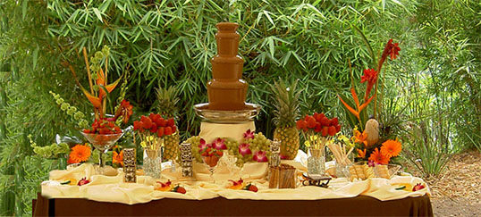 Chocolate Fountain Rentals Throughout Southern California